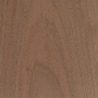 Walnut Timber